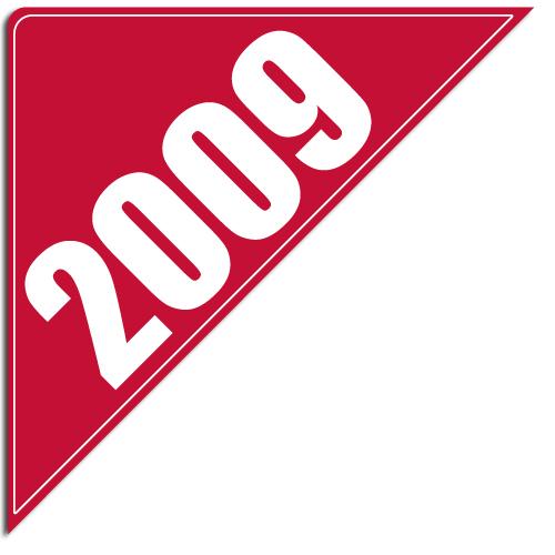 """[""""2009""""] Standard, Corner Windshield Decals (12""""x12""""x17"""")"""