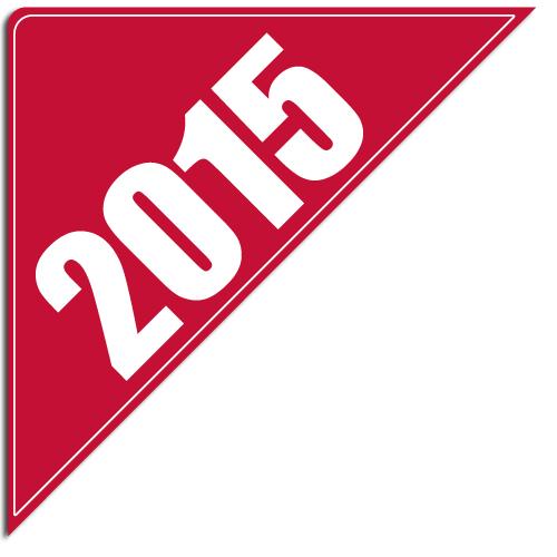 """[""""2015""""] Standard, Corner Windshield Decals (12""""x12""""x17"""")"""