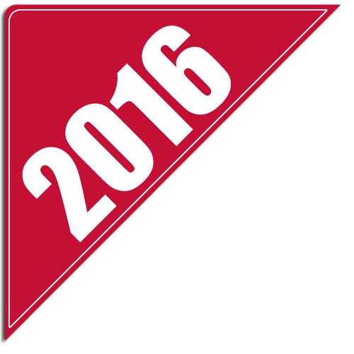 """[""""2016""""] Standard, Corner Windshield Decals (12""""x12""""x17"""")"""