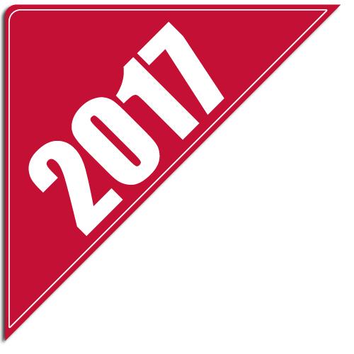 """[""""2017""""] Standard, Corner Windshield Decals (12""""x12""""x17"""")"""