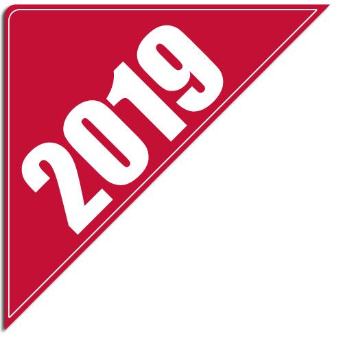 """[""""2019""""] Standard, Corner Windshield Decals (12""""x12""""x17"""")"""