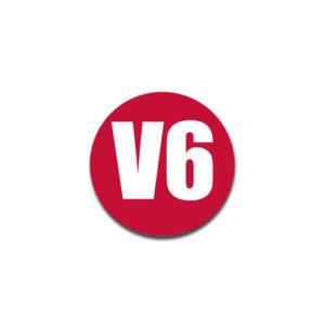 """""""V6""""  Badge Decals"""